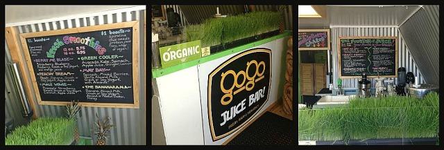 GoGo Juice Bar, Whitefish, MT