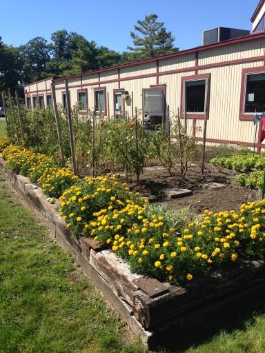 Onsite garden